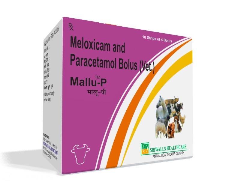 Veterinary Meloxicam & Paracetamol Bolus