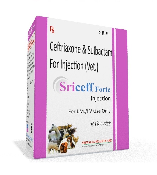 Veterinary Ceftriaxone Sulbactam 3 gm Injection
