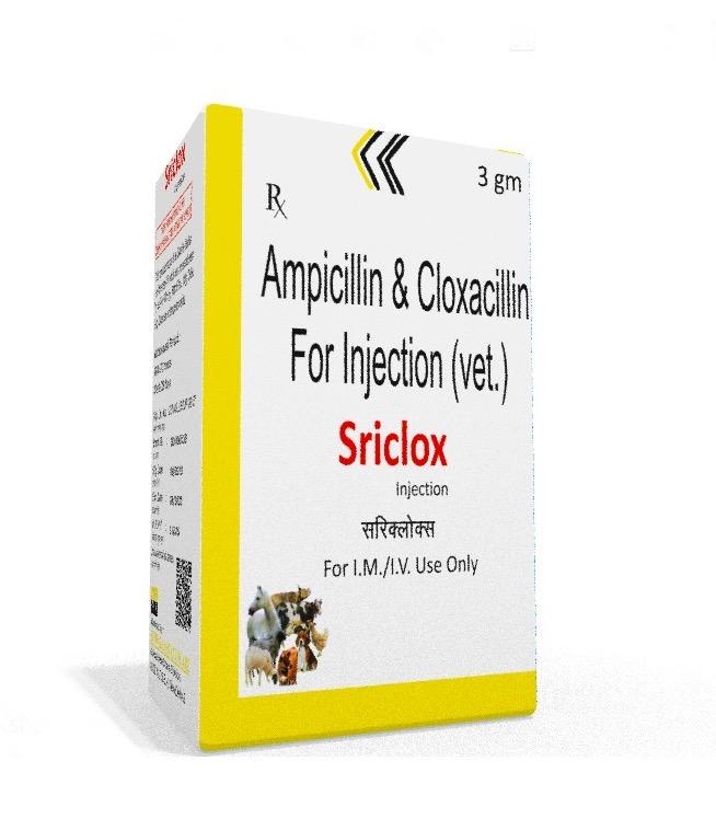 Veterinary Ampicillin Cloxacillin 3 gm Injection